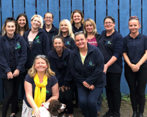 Eidyn Care Team